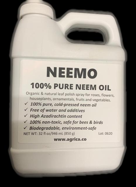 neem oil plant